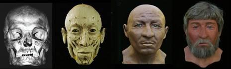 Reconstructions of the faces of the Mary Rose crew