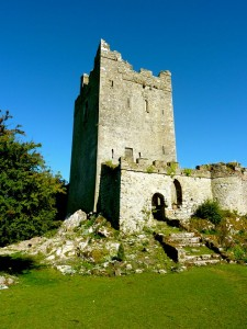 Clonony Castle, copyright Paudie Kennelly